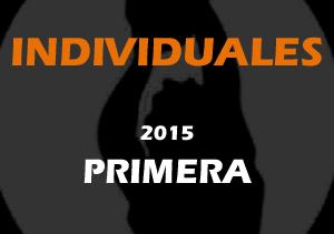 Stats Individuales Primera 2015
