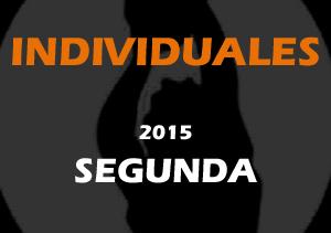 Stats Individuales Segunda 2015